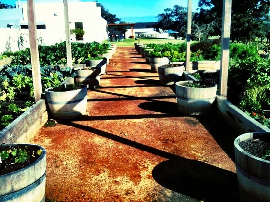 Dunsborough, Australien: Garden fresh goodness