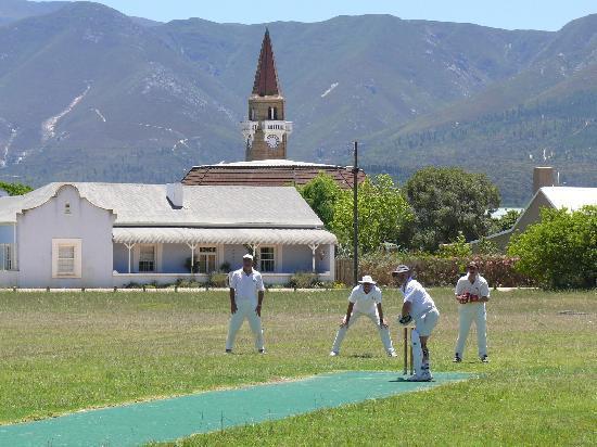 Cricket on the Stanford Village Green