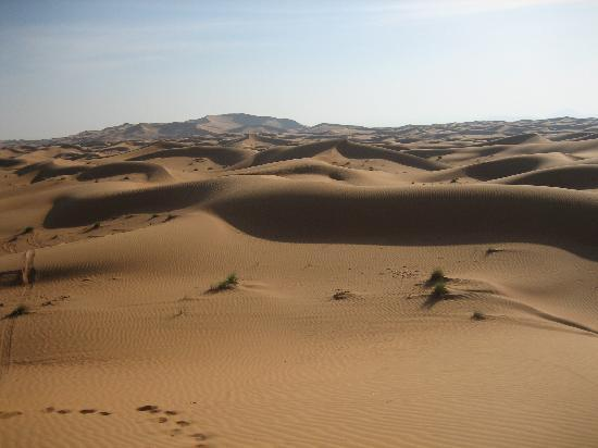 อัลมาฮาเดสเสิร์ท รีสอร์ท: Attività nel bellissimo deserto