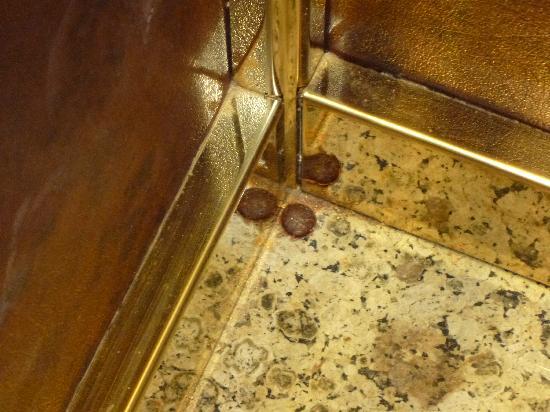 Movenpick Resort Hurghada: Un bonbon collé au sol dans un des ascensseurs qui est resté 10 jours