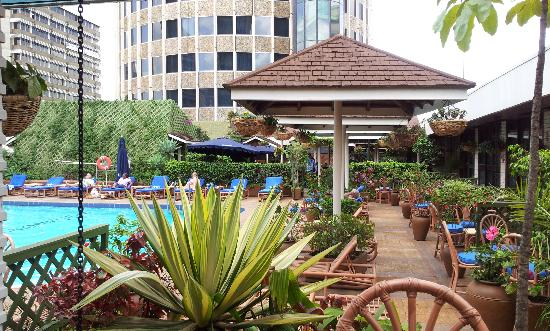 ฮิลตัน โฮเต็ล: The pool from my room