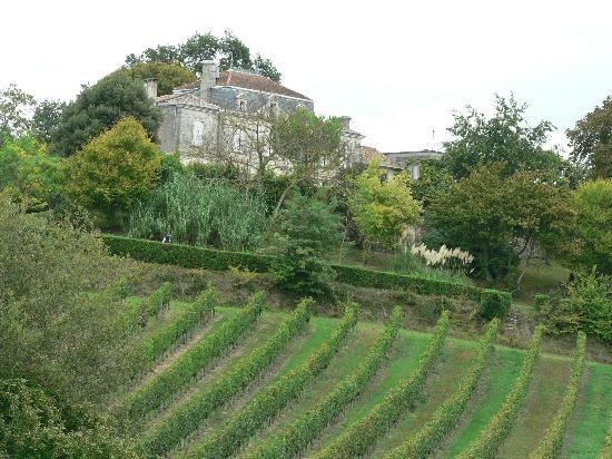 Chateau La Closerie De Fronsac: vue d'une chambre