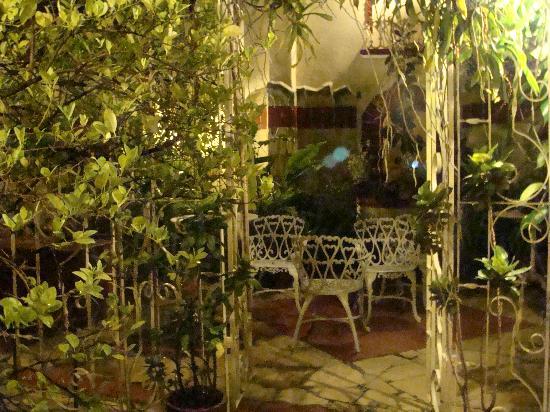 Hostal Florida Center: ecco il tripudio di piante nel cortile interno