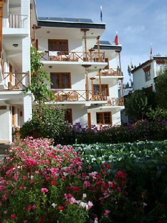 พัดม่า เกสท์เฮ้าส์ & โฮเต็ล: hotel with garden