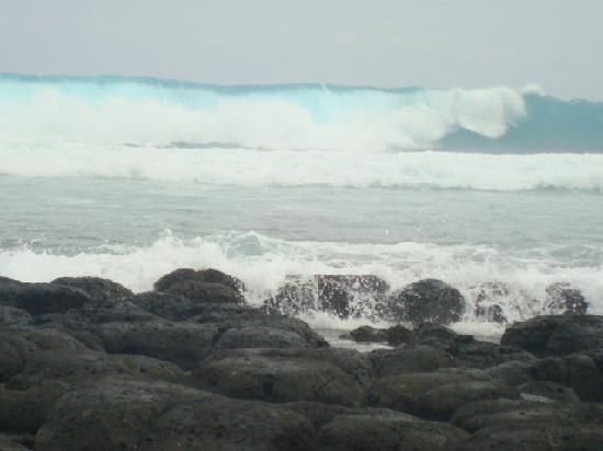 ลักซ์ เบลเล มาเร: barrière de Corail a l'île Coco