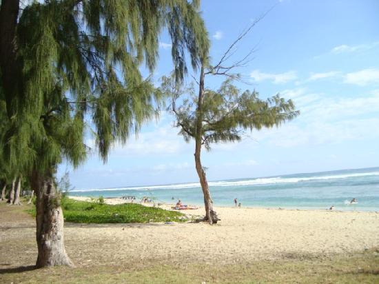 Hotel Le Recif: plage devant l'hôtel