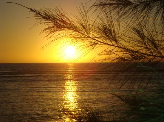 Hotel Le Recif: coucher de soleil plage devant l'hôtel