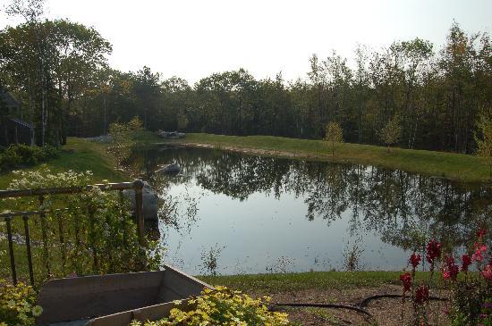 Hidden Pond: Lovely setting