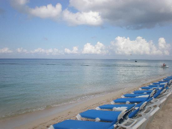 Mr Sanchos Beach Club Cozumel: Beach Area