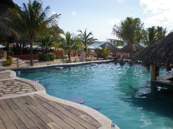 Mr Sanchos Beach Club Cozumel: Pool Area