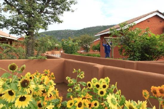 Damara Mopane Lodge Garden