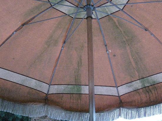 Gites La Balancelle: Sun umbrella
