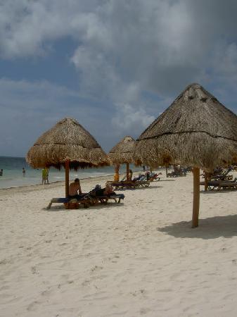 Ocean Coral & Turquesa: Beach xx