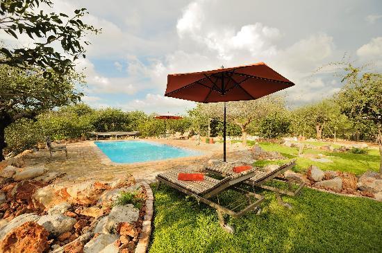 Etosha Village Swimming pool area