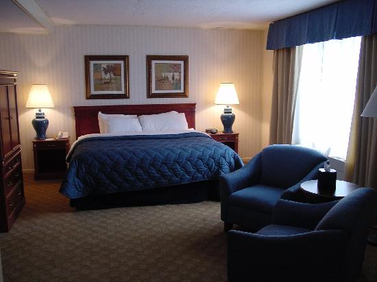 Lakeview Golf Resort and Spa: Our Suite #1