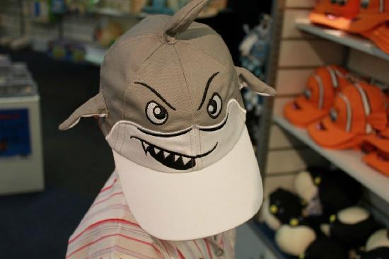 Sea Life Kelly Tarlton's Aquarium: Funky cap
