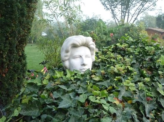 Moulin des Chennevieres: Ivy Lady