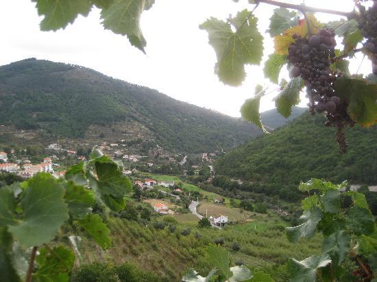 Pensao Serradalto: Vista desde la Terraza