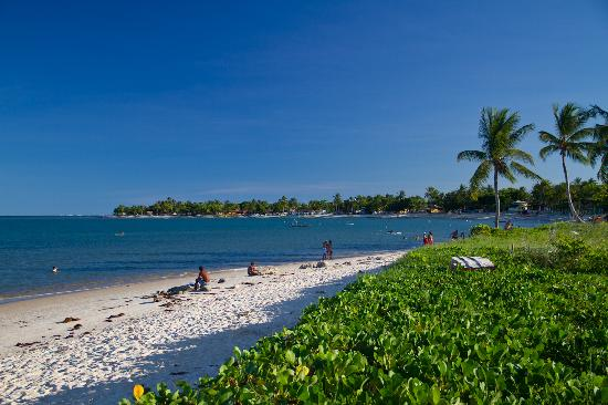 Resort La Torre : Coroa Vermelha (Red Crown) beach is 2 Km far, but go or come back walking only during the daylig