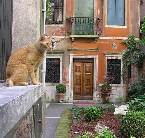 Ca' Angeli: garden & rosso