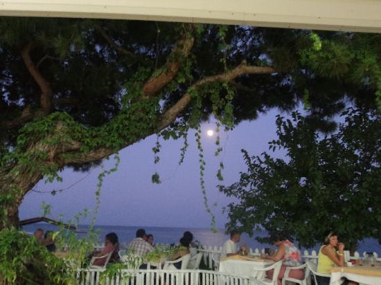 Beach Club Pinara: Вид из ресторана при отеле