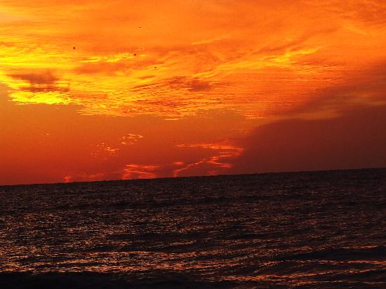 Sandcastle Resort at Lido Beach: Firey sunsets
