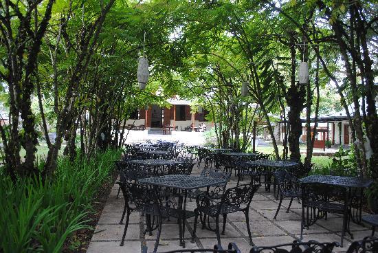 La Plaine St. Andre: Giardino