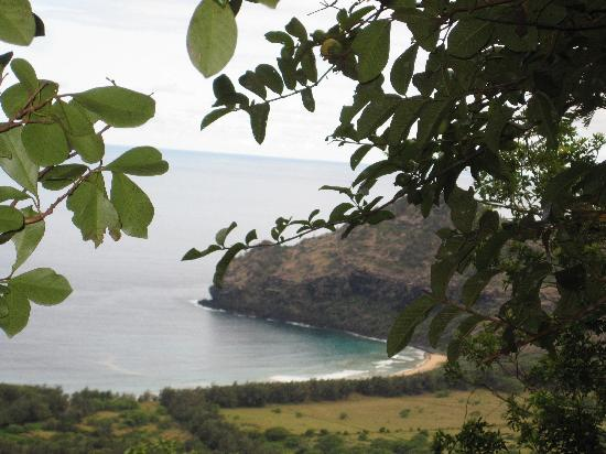 Kipu Ranch Adventures: rare kauai beach view
