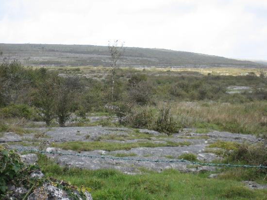Burren Perfumery: There is a lot of this scenery, all throughout the immediate area.