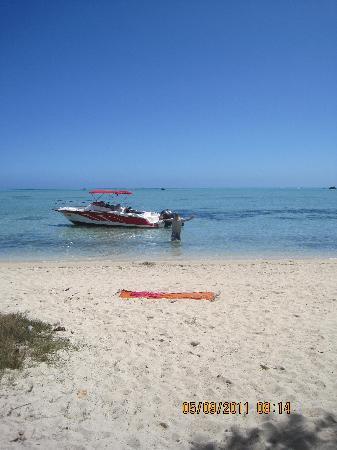 โรงแรมแอครีตาอาวารีกอล์ฟแอนด์สปารีสอร์ท: Coconut beach where we had bbq