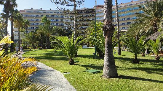 Melia Tamarindos: hotel garden