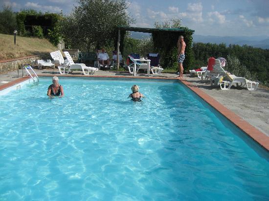 Agriturismo Il Poggio alle Ville: Pool area