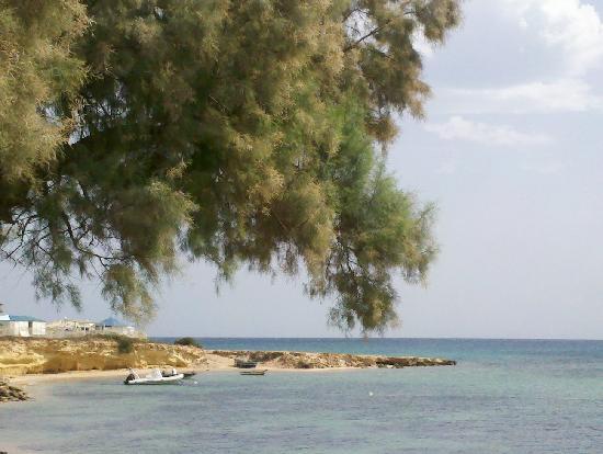 โรงแรมเลอซูลตาน: vue depuis jardin de l'hotel ou bord de mer