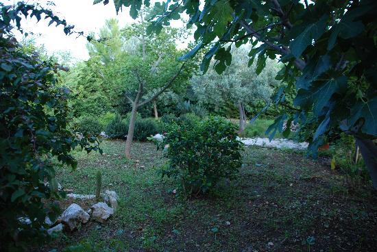 I Giardini di San Vito Lo Capo: Particolare giardino