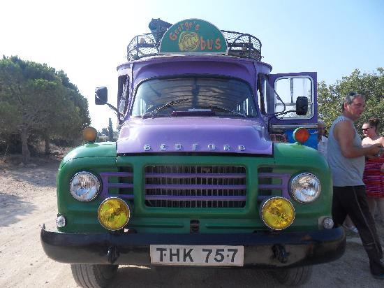 George's Fun Bus: Its a big purple bus!