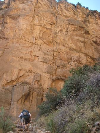 The Wildland Trekking Company: Ascending the South Rim's Coconino Sandstone