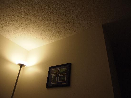 Yellowknife Polar Suite Guest Room: 室内2(間接照明がステキ)