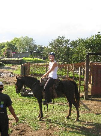 Guinness Travel - Day Tours: Horseback riding with Guinness travel