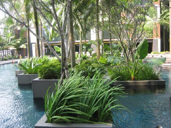 คราวน์ พลาซ่า โฮเต็ล ชางกี แอร์พอร์ท: Swimming pool
