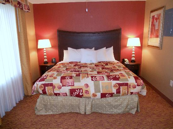 Homewood Suites by Hilton, Medford: King studio - comfybed if a tad soft with a plethora of nice pillows