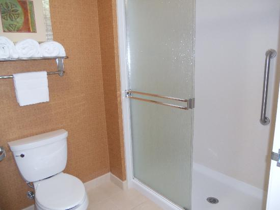 Homewood Suites by Hilton, Medford: Good size toilet & shower room