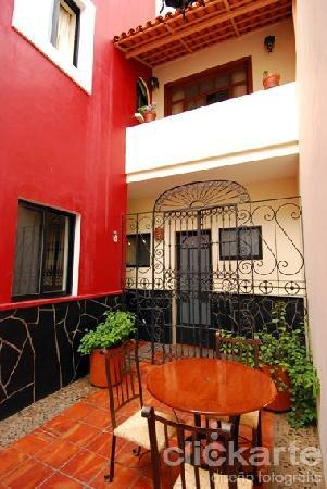 Olga Querida: Nuestro patio central, central courtyard