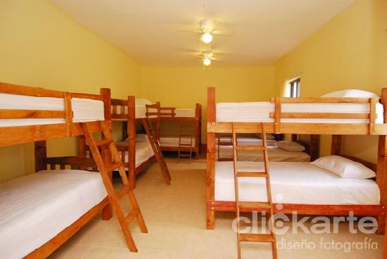 Olga Querida: Dormitorios, dorms
