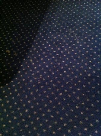 La Vignette: Angeblich frisch gereinigter Teppich