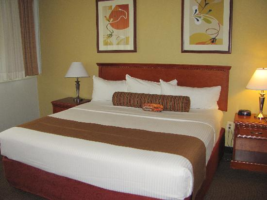 The Loyal Inn: Deluxe Room