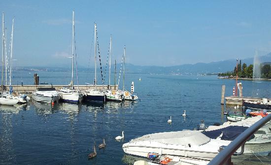 Bardolino (เทศบาลบาร์โดลิโน), อิตาลี: Lots of boats in the harbour - and ducks!