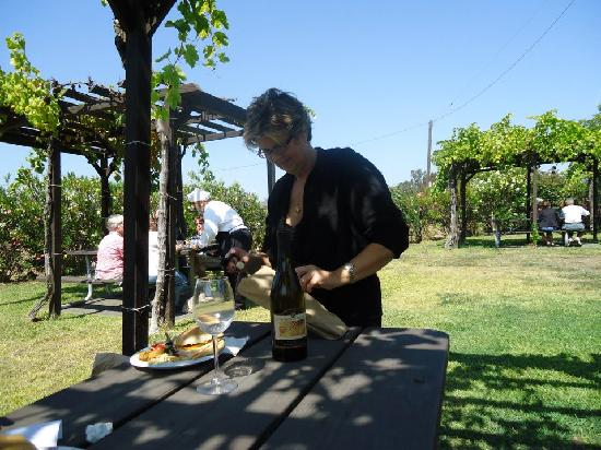 Napa Valley Wine Country Tours: Lunch Al Fresco