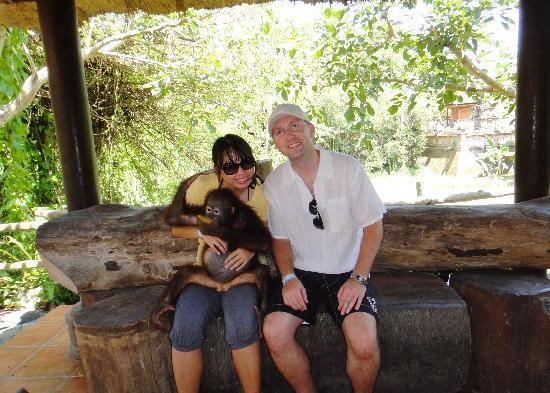 Bali Safari & Marine Park: Baby orangutan eating papaya