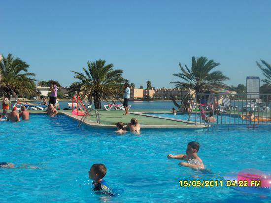 BelleVue Club: pool by Minerva 2