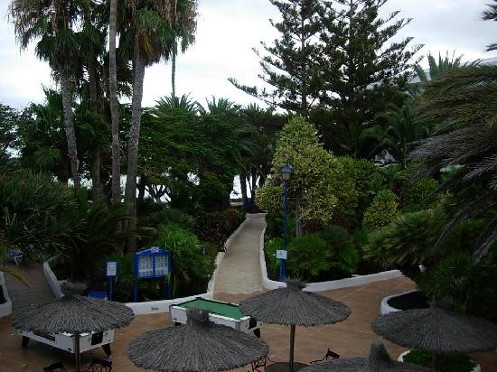 VIK Hotel San Antonio gardens